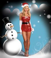 DG-5960 Red Hot Holiday Sexy Christmas Costume