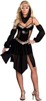 DG-6438 Sexy Harem Nights Womens Costume